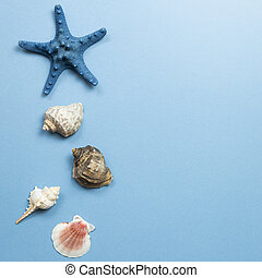 Shellfish and starfish on blue background. summer marine decoration. flat lay, top view, copy space