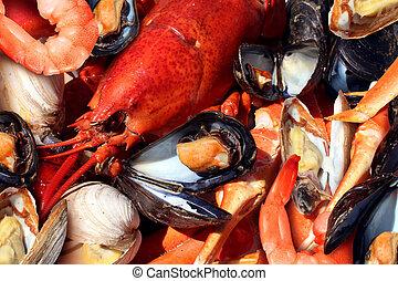 Shellfish plate of crustacean seafood as fresh lobster...