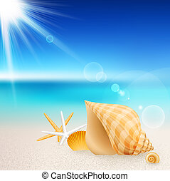 Shells and starfishes on the beach. Vector illustration.