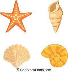shells., mare