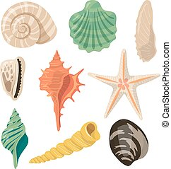 Shells of sea in sand. Aquatic vector icons in cartoon style