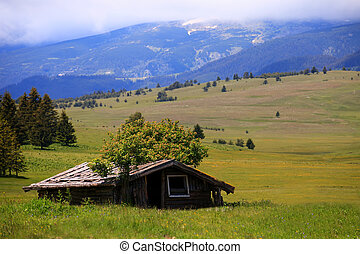 shelter in bulgarian meadows