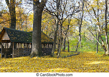 shelter in the beautiful autumn forest