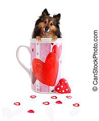Sheltie inside a Valentine mug
