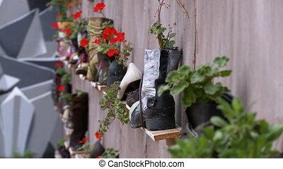 shelves, флора, выращивание, крупным планом, обувь