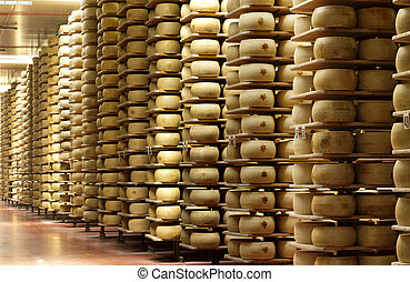 shelves of a warehouse of cheese - shelves of a cheese...