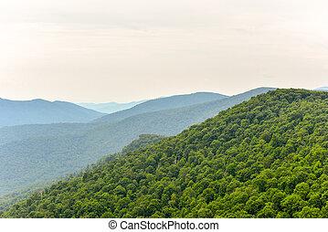Shenandoah National Park - Virginia