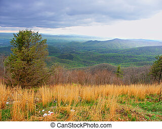 Shenandoah National Park Virginia