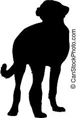 Shepherd dog silhouette on a white background