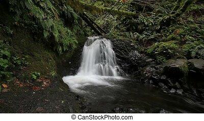 Shepperd's Dell Falls Oregon 1080p