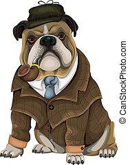 sherlock, bulldog
