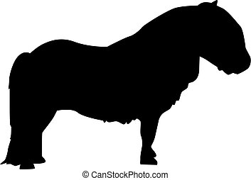 Shetland pony silhouette