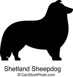 Shetland Sheepdog dog silhouette, side view, vector...