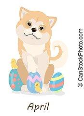 Shiba dogs calendar.