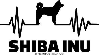 shiba, inu, parola, battito cardiaco
