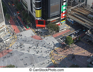 shibuya, cruce, tokio