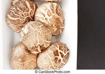shiitake, cogumelos
