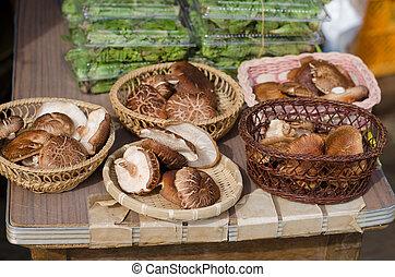Shiitake mushrooms in local market, Japan - Shiitake...