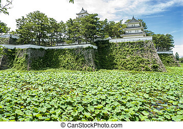 Shimabara castle and lotus covered green moat in Japan