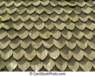 Shingle roof - Shingle covered roof