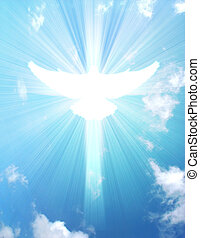 shining dove with rays on a sky background