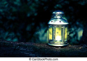 shining lantern in dark forest