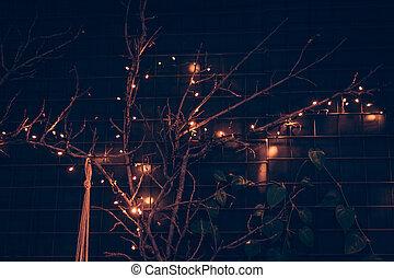 shining little lights on the black wall