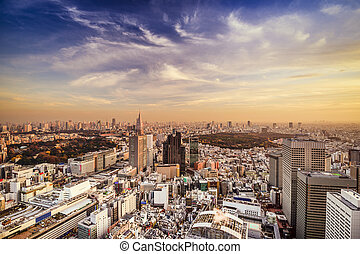 Tokyo, Japan city skyline at Shinjuku District.