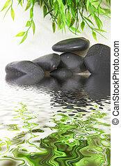 Shiny black stones in water