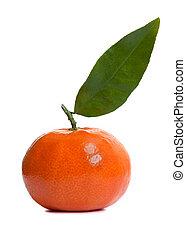 Shiny Clementine Fruit - Shiny clementine fruit on a white...
