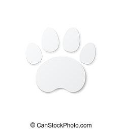 Shiny Plastic Trace of Cat.