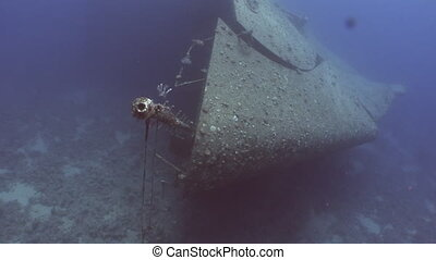 Ship Salem Express wrecks underwater in the Red Sea in...