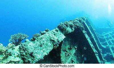 Gainis D - Ship wreck Gainis D underwater. Red Sea.