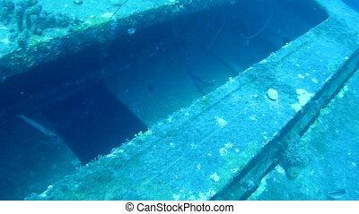 ship wreck Hilma Hooker Bonaire island caribbean sea underwater video