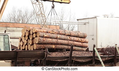 Shipping timber crane plant industry wood