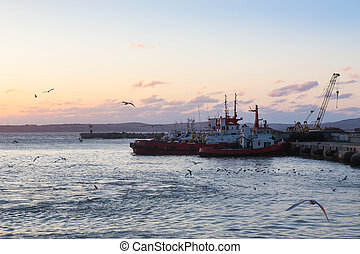 Ships and fishing boats are moored in docks.