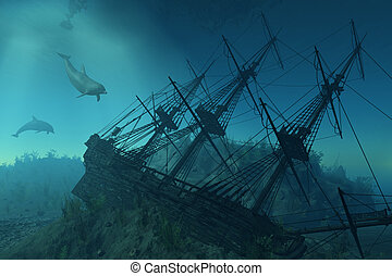 Shipwreck Beneath the Sea - Curious dolphins approach the...