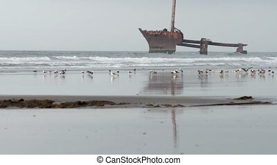 Shipwreck on a beach in Morocco. Ship reflects in water....