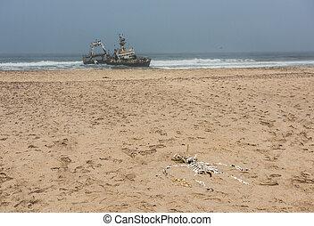 Shipwreck on beach, Skeleton Coast, Namibia