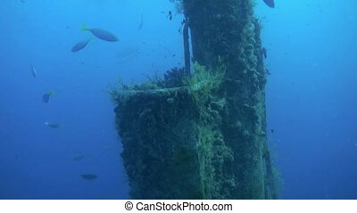Shipwreck underwater on background of school of fish soup in...
