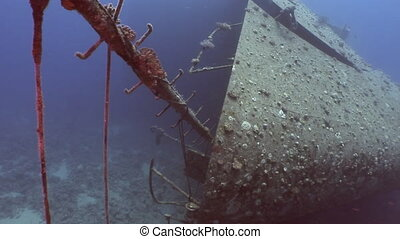 Shipwrecks Salem Express shipwrecks underwater in the Red...