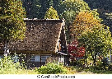 shirakawa-go, évad, ősz, mező, falu, kicsi, japan., rizs,...