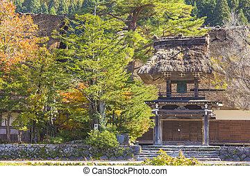 shirakawa-go, krydda, höst, fält, by, liten, japan., ris, stuga