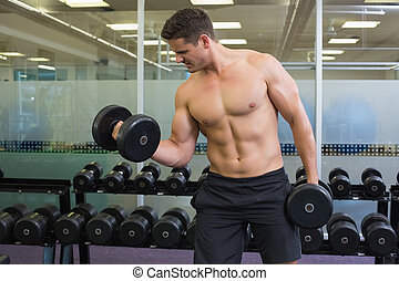 Shirtless determined bodybuilder lifting heavy black...