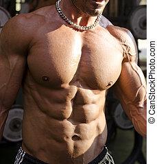 shirtless, gym, gespierd, gedurende, torso, workout, man