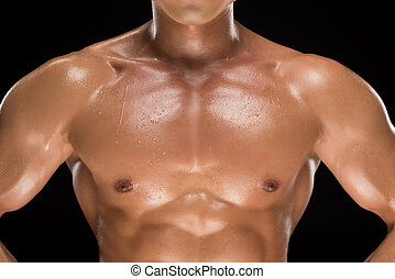 shirtless, muscolare, uomo