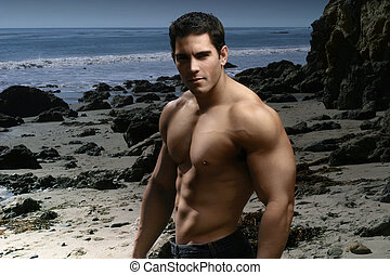shirtless, spiaggia, muscolare, uomo