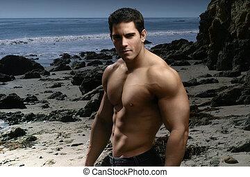 shirtless, strand, gespierd, man
