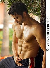 shirtless, tipo, caldo