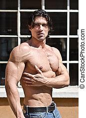 shirtless, uomo, attraente, muscolare, fuori